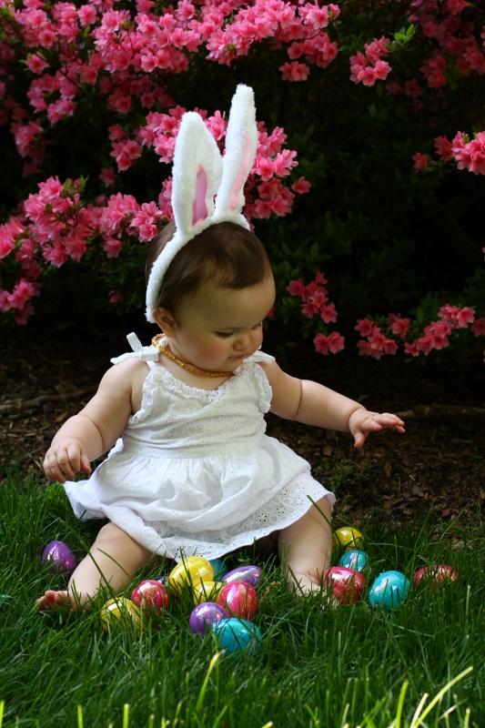 Baby bunny photo inspiration