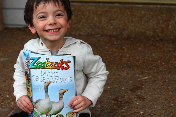 5 reasons to love zoobooks