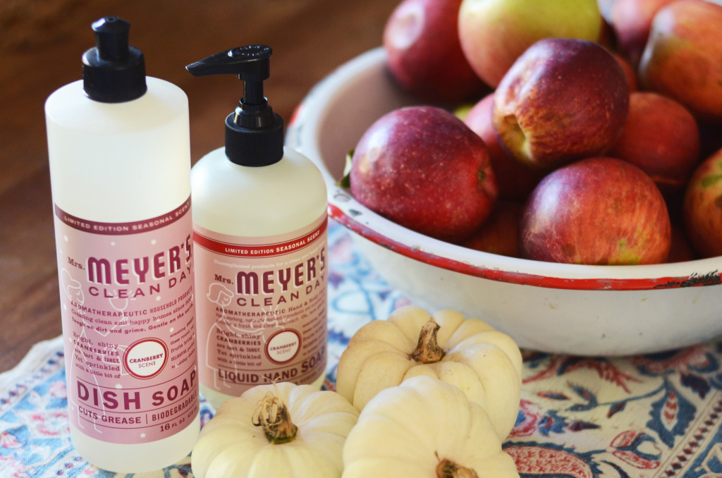 Epantry free mrs meyer s seasonal scents pack 29 value for Fall soap scents