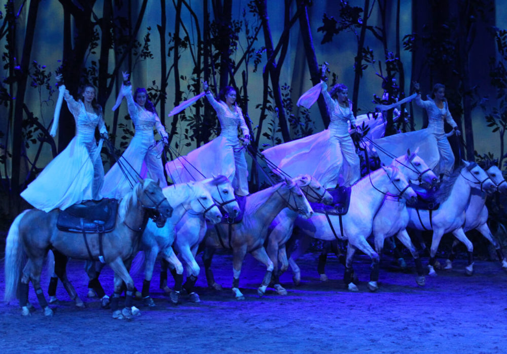Why Cavalia is Worth the Ticket Price